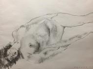 裸婦 XVI